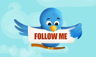 Twitter_bird_follow_me1